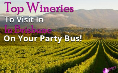 Top Wineries To Visit In Brisbane On Your Party Bus!